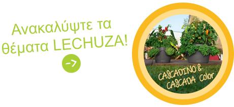 Ανακαλύψτε τα θέματα LECHUZA: CASCADA CASCADINO
